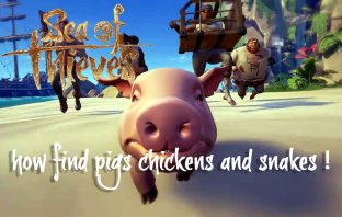 sea-of-thieves-how-find-chickens-pigs-and-snakes