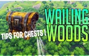 tips-for-challenge-chests-in-wailing-woods-fortnite