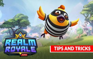 realm-royale-tips-and-tricks