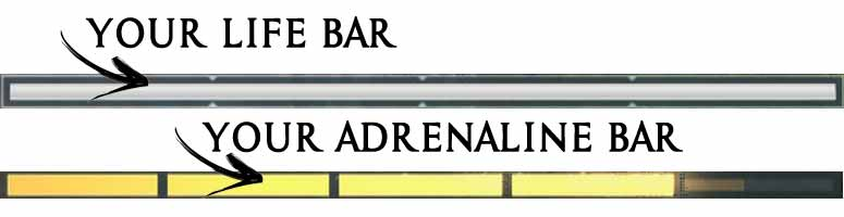 life-and-adrenaline-bar-AC-odyssey