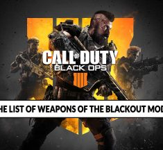 Call of Duty Black Ops 4 the list of weapons in Blackout mode