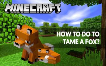 minecraft-1-14-the-guide-for-tame-a-fox-easy