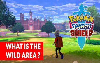 pokemon-sword-and-shield-what-is-the-wild-area