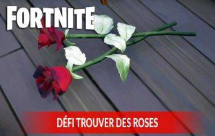 guide-fortnite-reussir-le-defi-de-trouver-des-roses
