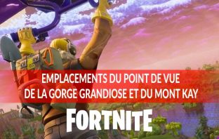 guide-fortnite-visiter-lieux-notable-semaine-12-defi