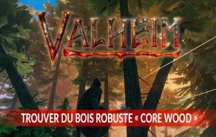 guide-valheim-comment-obtenir-du-bois-robuste-core-wood-en-anglais