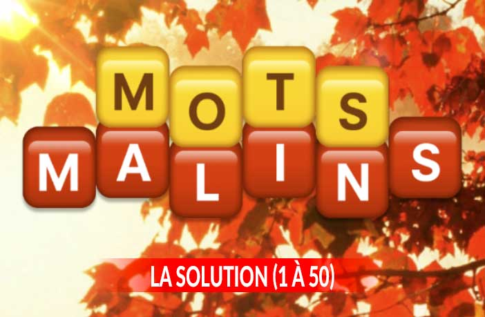 solution-du-jeu-mots-malins-android-ios