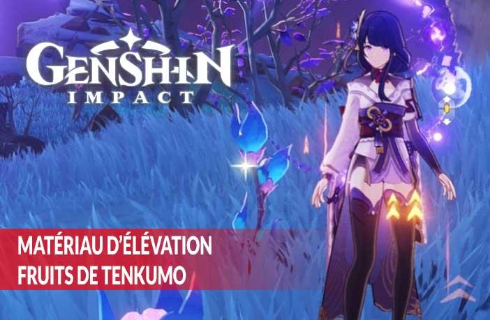 trouver-des-fruits-de-Tenkumo-Baal-Genshin-Impact